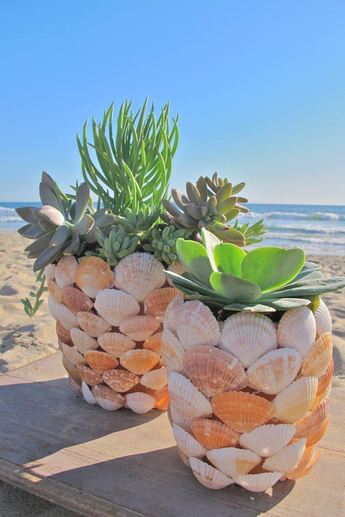 Beachy DIY Shell Planter