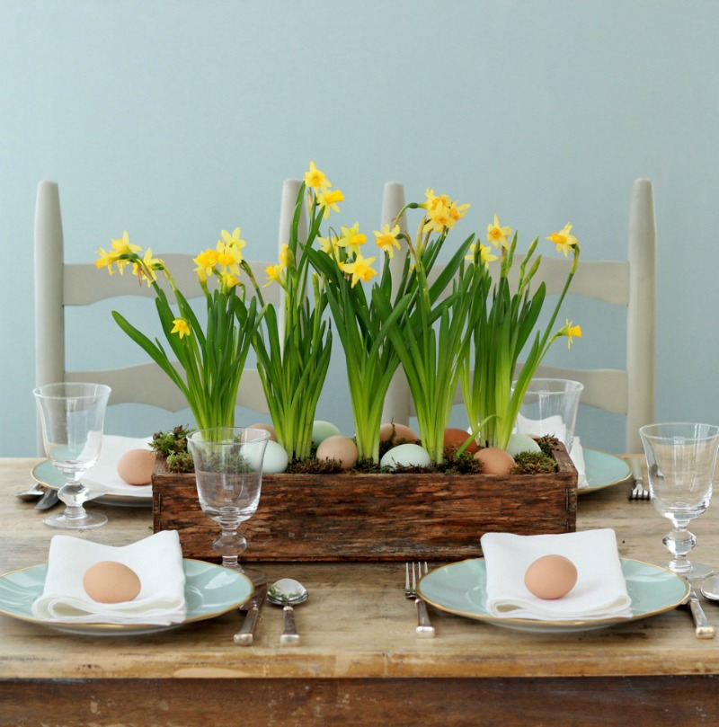 Spring Centerpieces with Blue Eggs and Daffodils