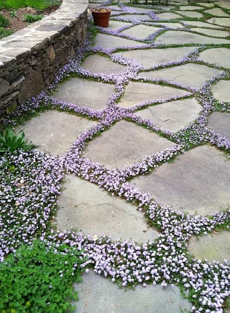 Flagstone and Flowers Walkway