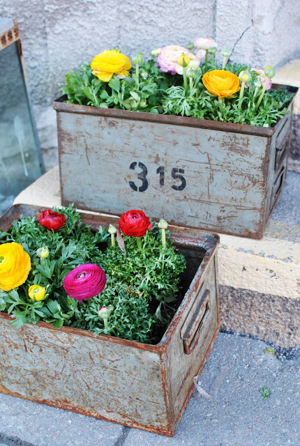 Metal Drawer Planter