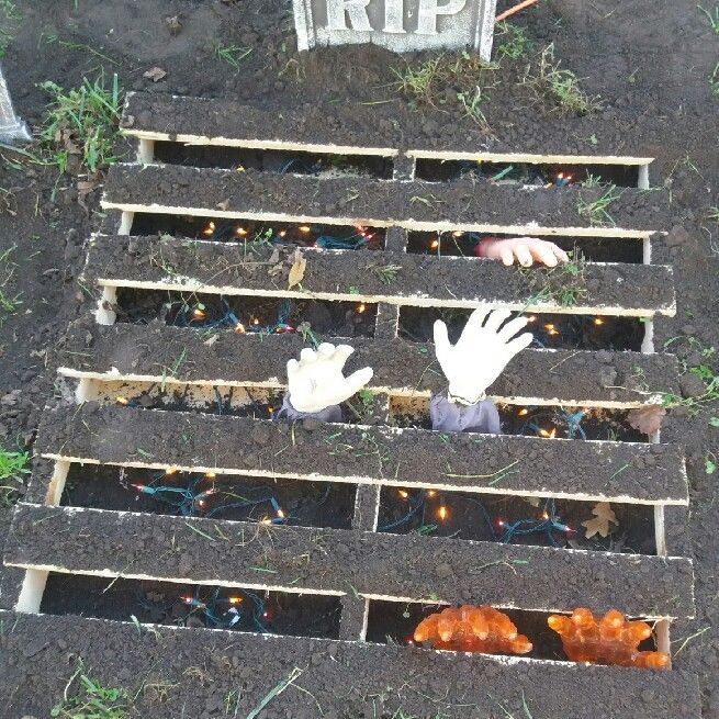 Zombie Hands Emerging Out of Graves
