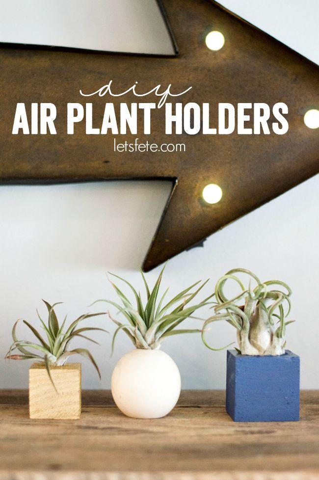 DIY Air Plant Holders