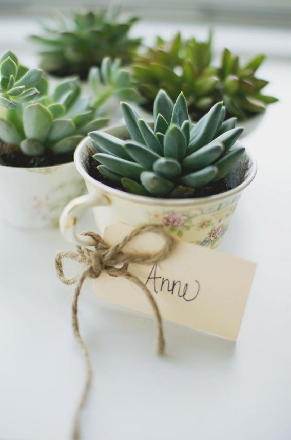 DIY Tea Cup Planter Party Favors