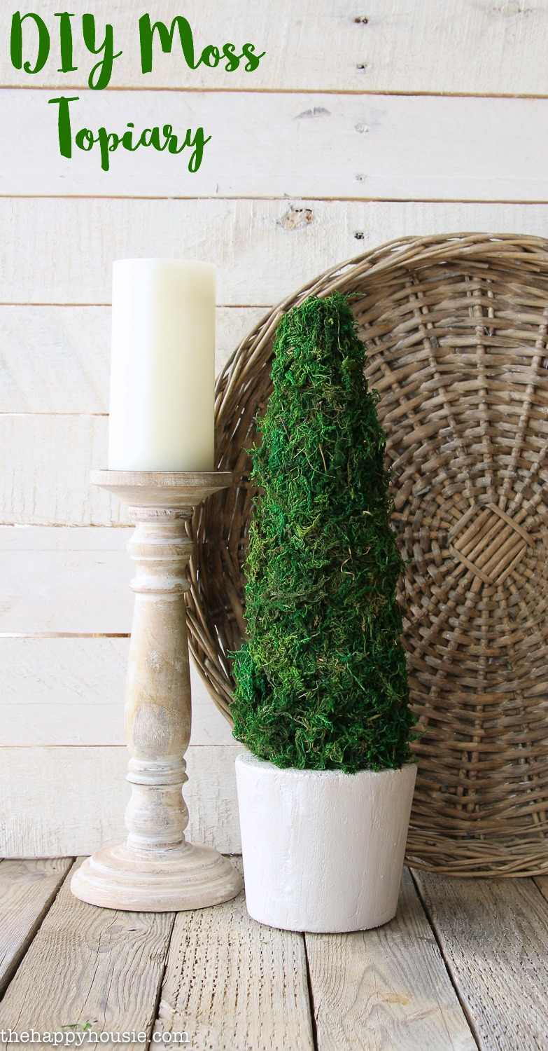 Farmhouse Style Moss Topiary Tree