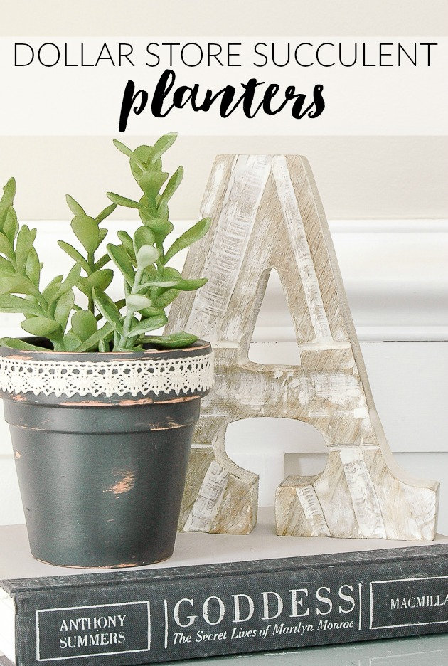 Affordable Dollar Tree Succulent Pots
