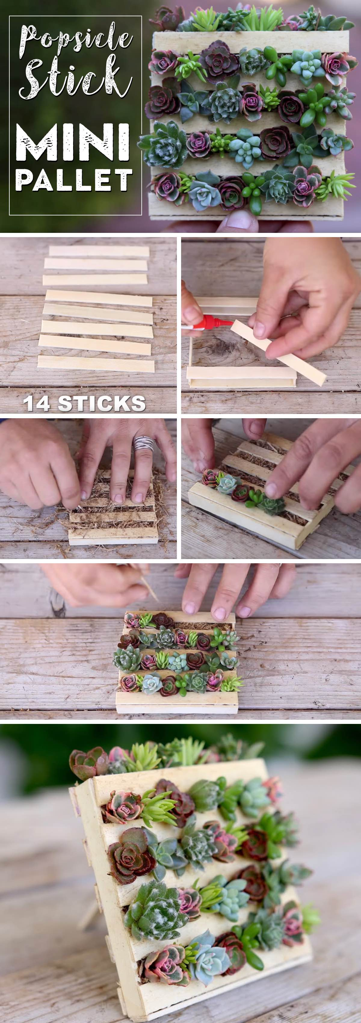 These Mini Pallet Planters For Succulents Are A Popsicle Sticks Wonder